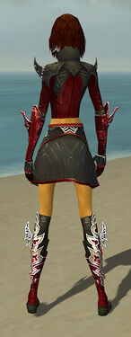 Assassin Deldrimor Armor F dyed back