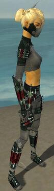 Assassin Seitung Armor F gray side