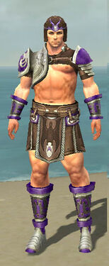 Warrior Gladiator Armor M dyed front