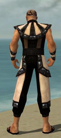 File:Monk Obsidian Armor M dyed back.jpg
