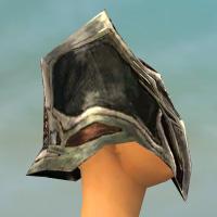 File:Warrior Elite Kurzick Armor F gray head side.jpg