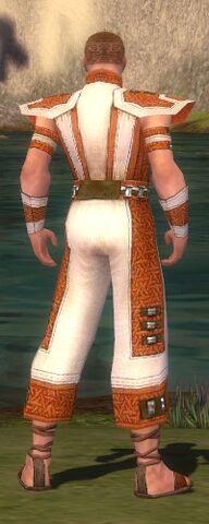 File:Monk Elite Saintly Armor M dyed back.jpg
