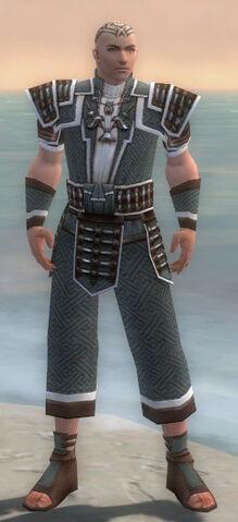 File:Monk Elite Judge Armor M gray front.jpg