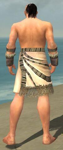 File:Monk Istani Armor M gray arms legs back.jpg
