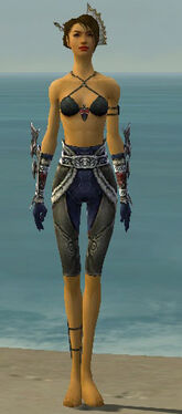 Assassin Norn Armor F gray arms legs front