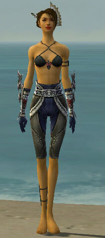 File:Assassin Norn Armor F gray arms legs front.jpg
