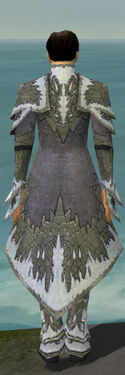 Elementalist Iceforged Armor M gray back