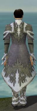 Elementalist Iceforged Armor M gray back