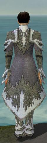 File:Elementalist Iceforged Armor M gray back.jpg