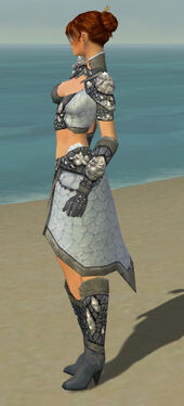 Elementalist Stoneforged Armor F gray side