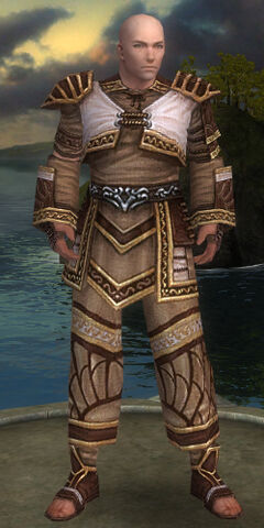 File:Monk Elite Canthan Armor M gray front.jpg
