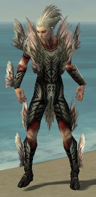 File:Necromancer Primeval Armor M gray.jpg