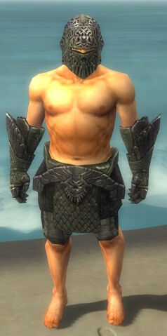 File:Warrior Elite Platemail Armor M gray arms legs front.jpg