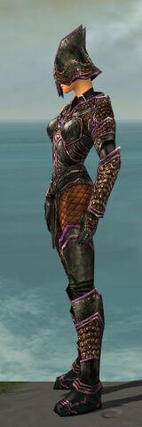 File:Warrior Kurzick Armor F dyed side.jpg
