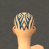 File:Monk Asuran Armor F dyed head back.jpg