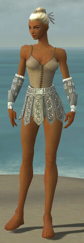 File:Warrior Ascalon Armor F gray arms legs front.jpg