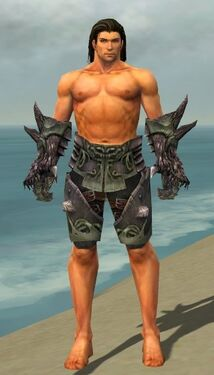 Warrior Primeval Armor M gray arms legs front