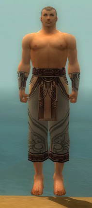 File:Monk Asuran Armor M gray arms legs front.jpg