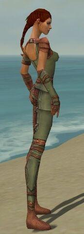 File:Ranger Ascalon Armor F gray side.jpg