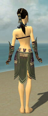 Ritualist Obsidian Armor F gray arms legs back