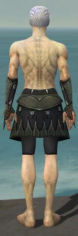 File:Necromancer Cabal Armor M gray arms legs back.jpg