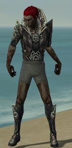 File:Necromancer Monument Armor M gray chest feet front.jpg