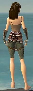 Ranger Shing Jea Armor F gray arms legs back