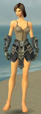 Warrior Elite Templar Armor F gray arms legs front