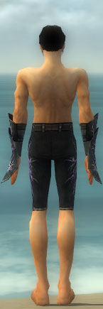 File:Elementalist Ascended Aeromancer's M gray arms legs back.jpg