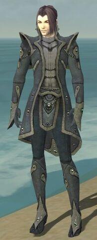 File:Elementalist Tyrian Armor M gray front.jpg