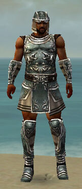 Warrior Istani Armor M gray front