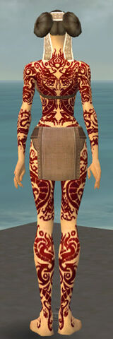 File:Monk Dragon Armor F dyed back.jpg