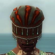 File:Ritualist Elite Exotic Armor M gray head front.jpg
