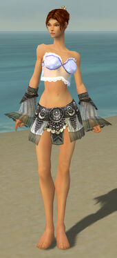 Elementalist Luxon Armor F gray arms legs front