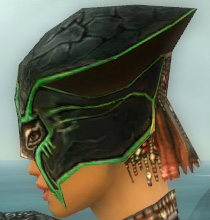 File:Warrior Luxon Armor F dyed head side.jpg