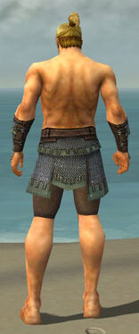 Warrior Tyrian Armor M gray arms legs back