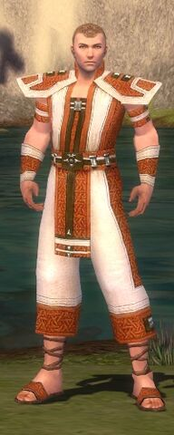 File:Monk Elite Saintly Armor M dyed front.jpg