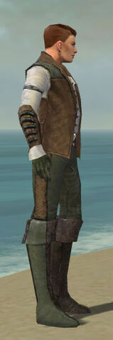 File:Mesmer Enchanter Armor M gray side.jpg