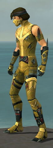 File:Assassin Canthan Armor M dyed side.jpg