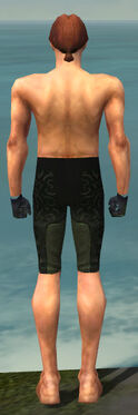 Mesmer Sunspear Armor M gray arms legs back
