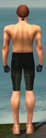 File:Mesmer Sunspear Armor M gray arms legs back.jpg