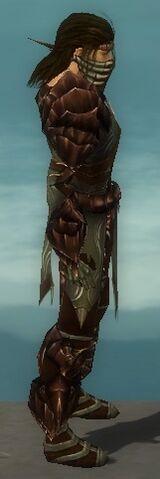 File:Ranger Primeval Armor M gray side alternate.jpg