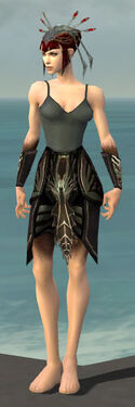 Necromancer Istani Armor F gray arms legs front