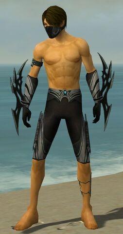 File:Assassin Vabbian Armor M gray arms legs front.jpg