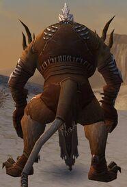 Pyre Fierceshot Armor Brotherhood Back