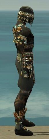 File:Ritualist Elite Luxon Armor M gray side.jpg