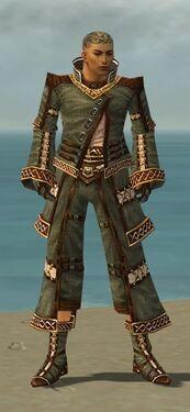 Monk Elite Kurzick Armor M gray front