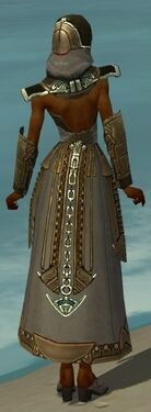 Dervish Asuran Armor F gray back