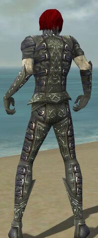 File:Necromancer Ascalon Armor M gray back.jpg