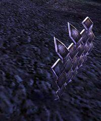 Enchanted Shield